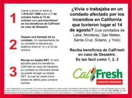 Eres eligible par Disaster CalFresh Food Benfits?